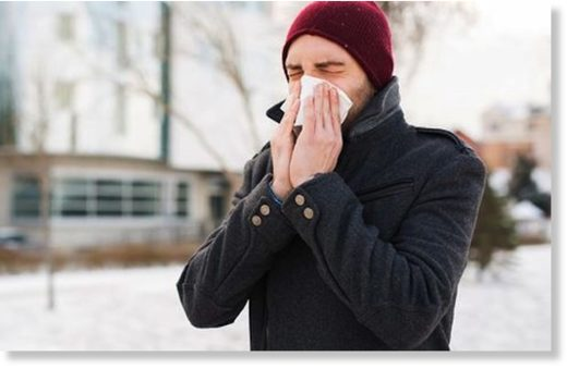Immune system-boosting nutrients we're in more need of during fall and winter
