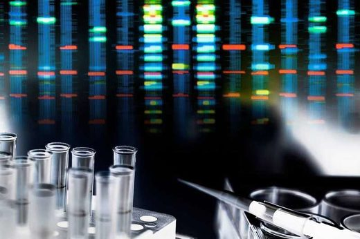 Genetic risk scores alone aren't that good at predicting health