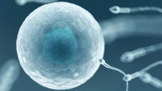 HIV-positive sperm bank opens in New Zealand