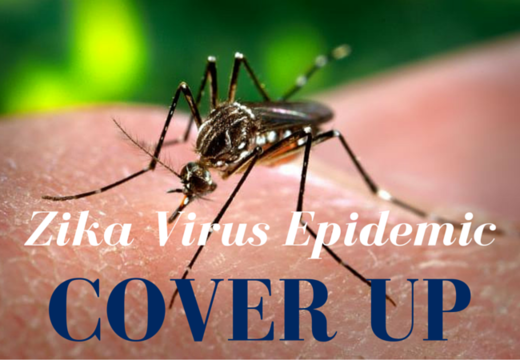 BEST OF THE WEB FLASHBACK: What is the Zika virus epidemic covering up? Big Pharma vaccines, GM-mosquitoes, and frankenfood
